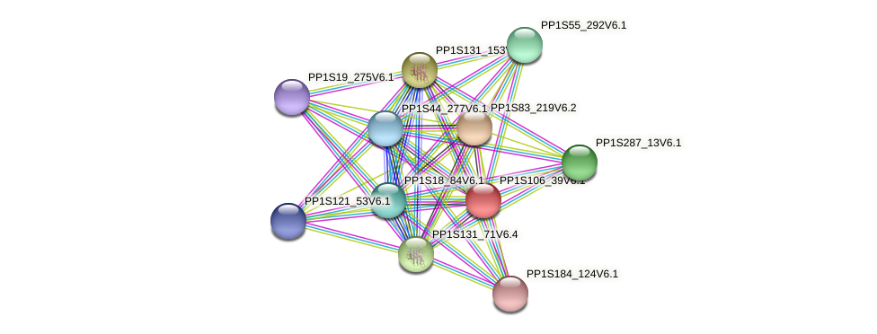 PP1S106_39V6.1 protein (Physcomitrella patens) - STRING interaction network