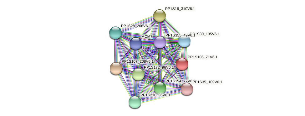 PP1S106_71V6.1 protein (Physcomitrella patens) - STRING interaction network