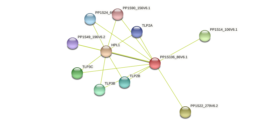 PP1S106_86V6.1 protein (Physcomitrella patens) - STRING interaction network