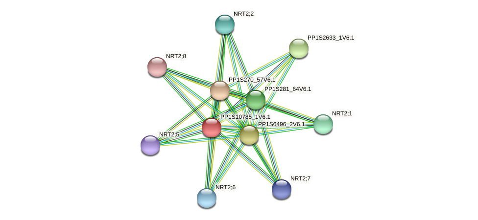 PP1S10785_1V6.1 protein (Physcomitrella patens) - STRING interaction network