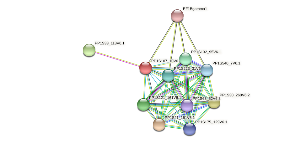 PP1S107_10V6.1 protein (Physcomitrella patens) - STRING interaction network