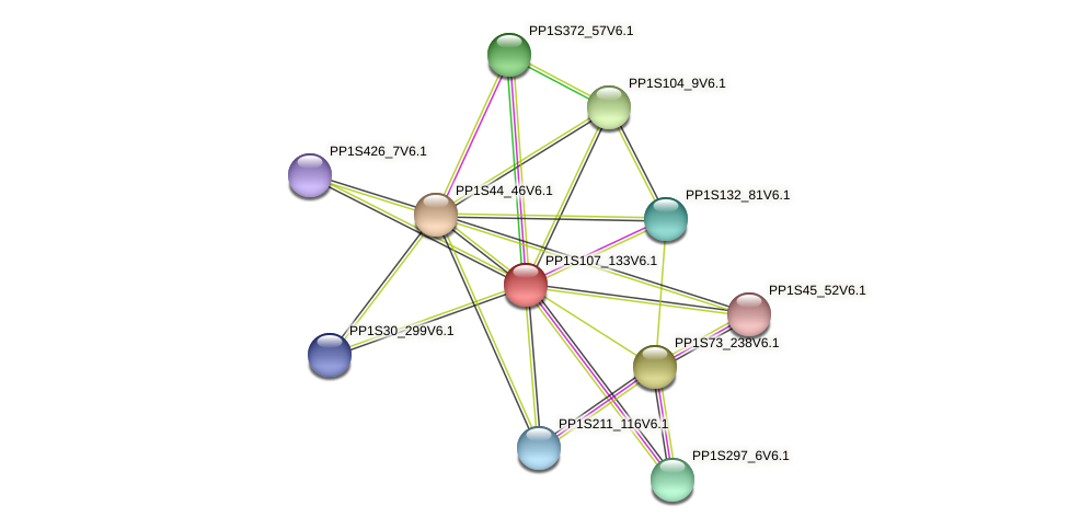 PP1S107_133V6.1 protein (Physcomitrella patens) - STRING interaction network