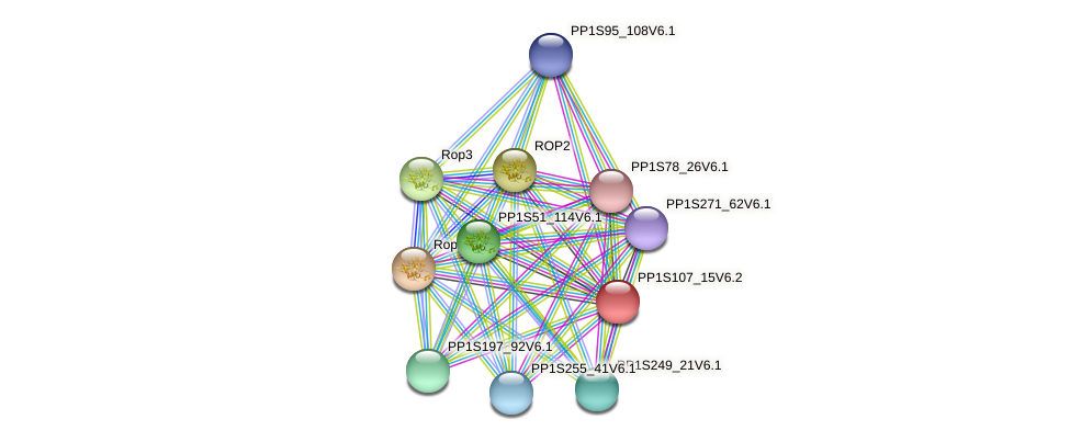 PP1S107_15V6.1 protein (Physcomitrella patens) - STRING interaction network