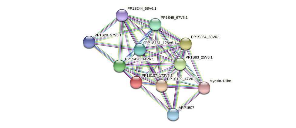 PP1S107_173V6.1 protein (Physcomitrella patens) - STRING interaction network