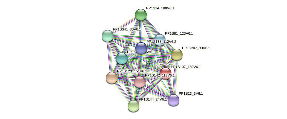 PP1S107_182V6.1 protein (Physcomitrella patens) - STRING interaction network