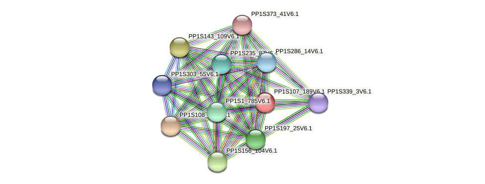 PP1S107_189V6.1 protein (Physcomitrella patens) - STRING interaction network