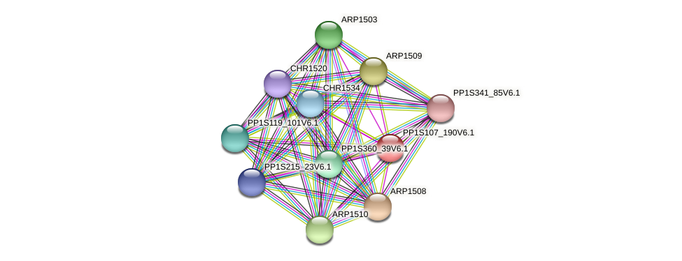 PP1S107_190V6.1 protein (Physcomitrella patens) - STRING interaction network