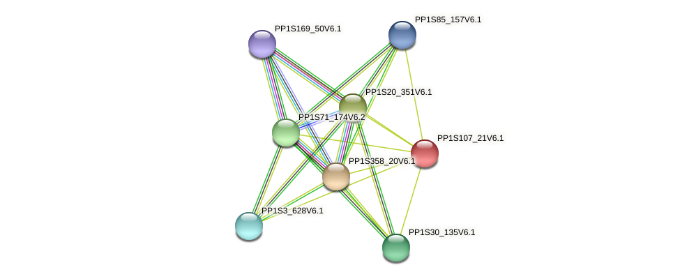 PP1S107_21V6.1 protein (Physcomitrella patens) - STRING interaction network