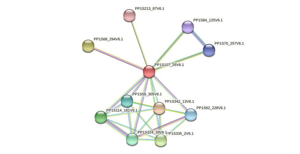PP1S107_26V6.1 protein (Physcomitrella patens) - STRING interaction network