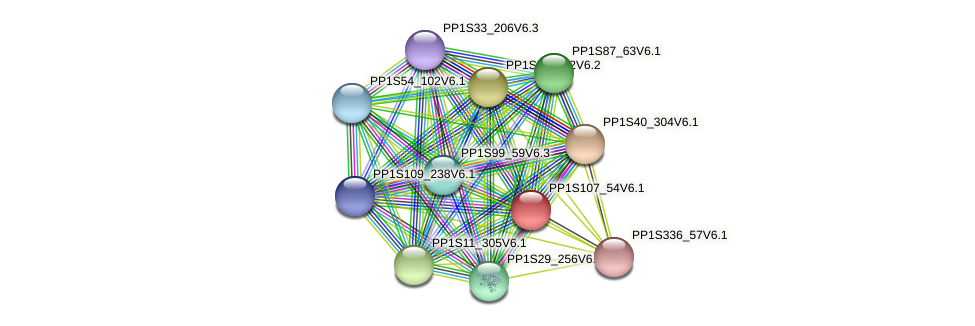 PP1S107_54V6.1 protein (Physcomitrella patens) - STRING interaction network