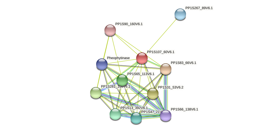 PP1S107_60V6.1 protein (Physcomitrella patens) - STRING interaction network