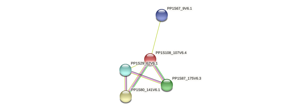 PP1S108_107V6.1 protein (Physcomitrella patens) - STRING interaction network