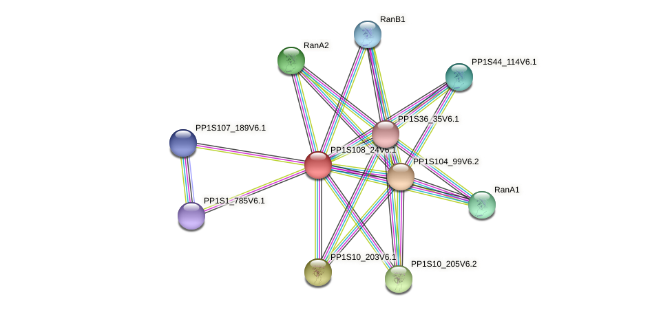 PP1S108_24V6.1 protein (Physcomitrella patens) - STRING interaction network
