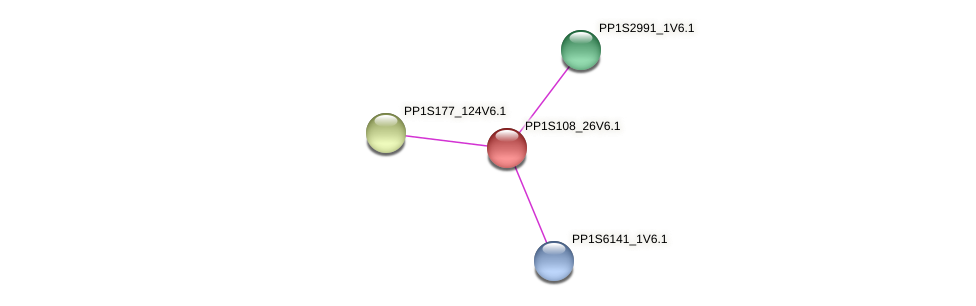 PP1S108_26V6.1 protein (Physcomitrella patens) - STRING interaction network