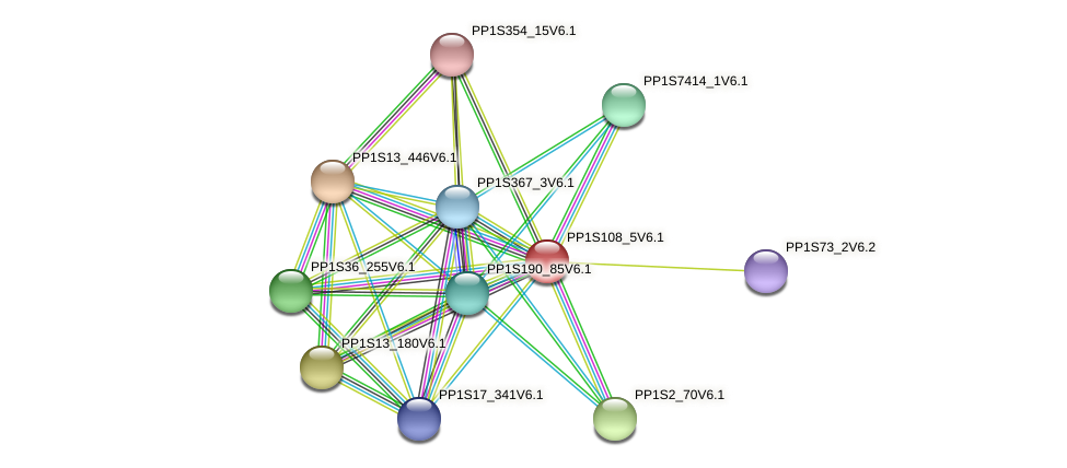 PP1S108_5V6.1 protein (Physcomitrella patens) - STRING interaction network