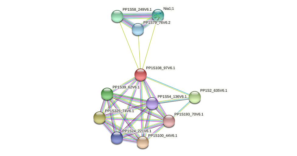 PP1S108_97V6.1 protein (Physcomitrella patens) - STRING interaction network