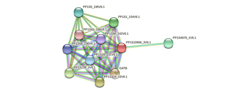 PP1S10906_3V6.1 protein (Physcomitrella patens) - STRING interaction network