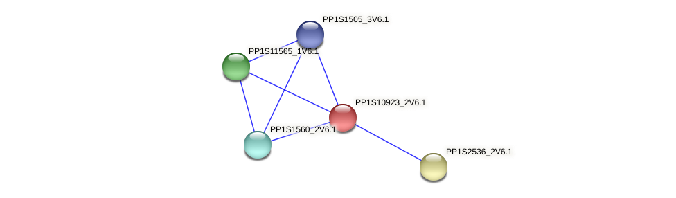 PP1S10923_2V6.1 protein (Physcomitrella patens) - STRING interaction network