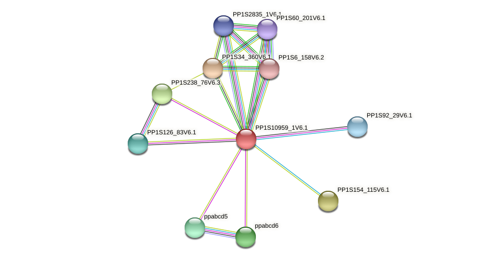 PP1S10959_1V6.1 protein (Physcomitrella patens) - STRING interaction network