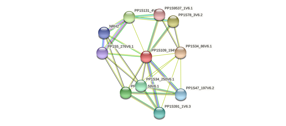 PP1S109_194V6.1 protein (Physcomitrella patens) - STRING interaction network