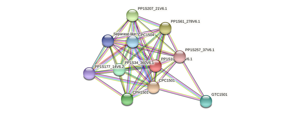 PP1S109_208V6.1 protein (Physcomitrella patens) - STRING interaction network