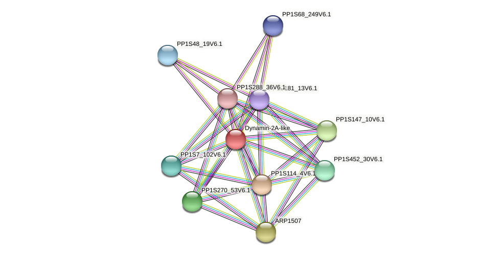 PP1S109_214V6.1 protein (Physcomitrella patens) - STRING interaction network