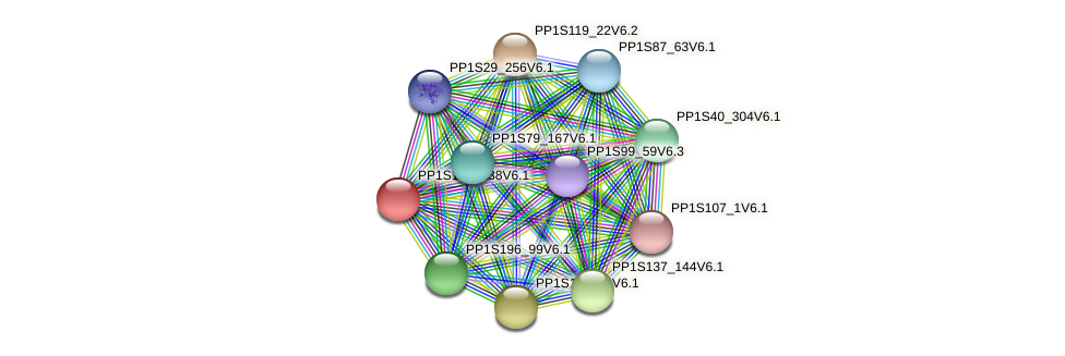 PP1S109_238V6.1 protein (Physcomitrella patens) - STRING interaction network