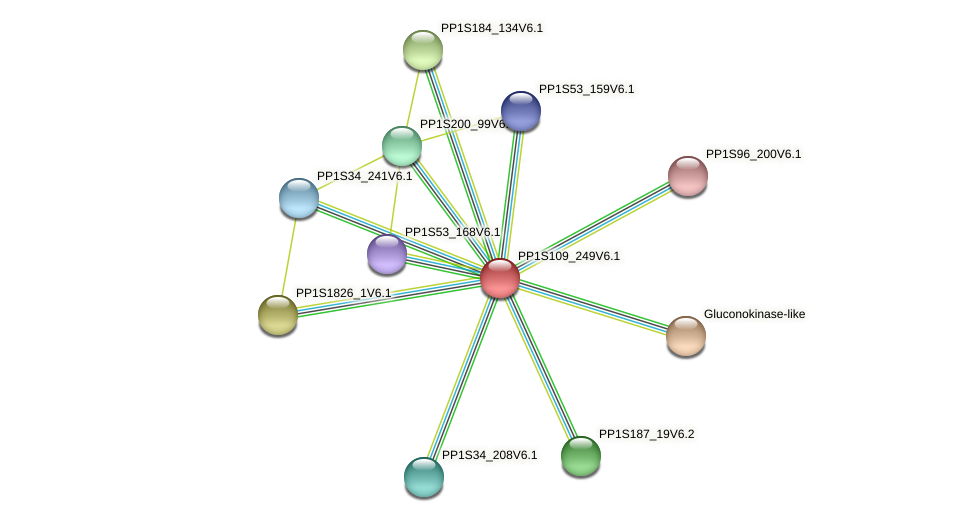 PP1S109_249V6.1 protein (Physcomitrella patens) - STRING interaction network