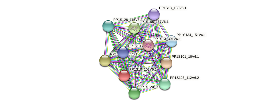 PP1S10_102V6.1 protein (Physcomitrella patens) - STRING interaction network