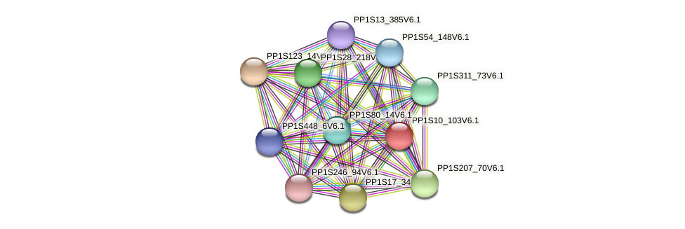 PP1S10_103V6.1 protein (Physcomitrella patens) - STRING interaction network