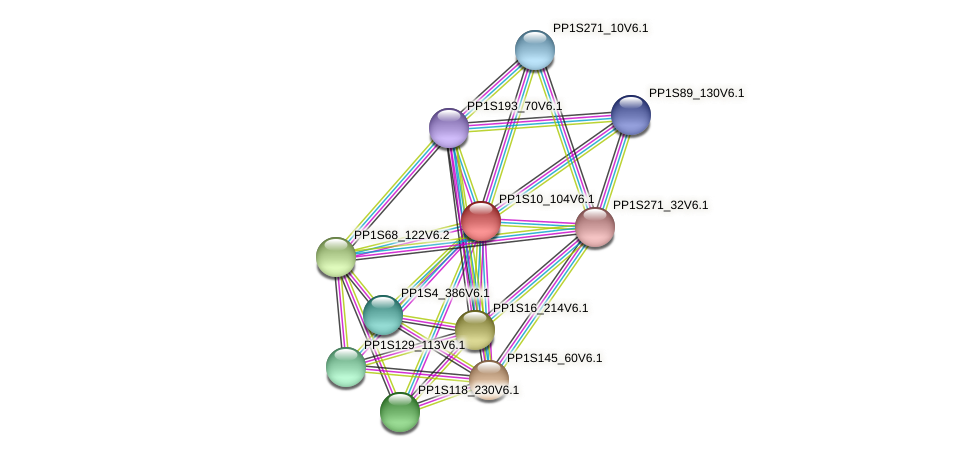 PP1S10_104V6.1 protein (Physcomitrella patens) - STRING interaction network