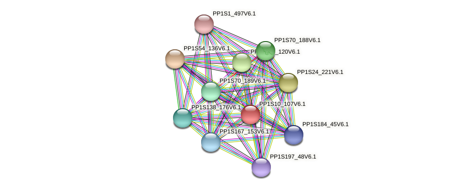 PP1S10_107V6.1 protein (Physcomitrella patens) - STRING interaction network