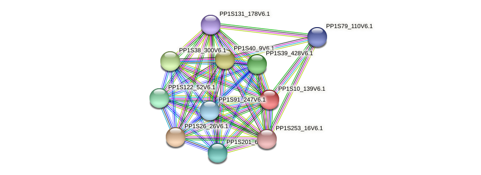 PP1S10_139V6.1 protein (Physcomitrella patens) - STRING interaction network