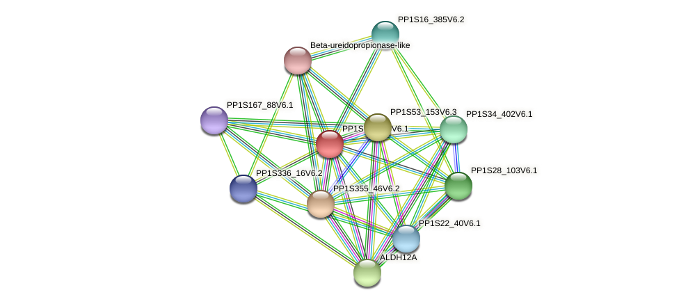 PP1S10_153V6.1 protein (Physcomitrella patens) - STRING interaction network