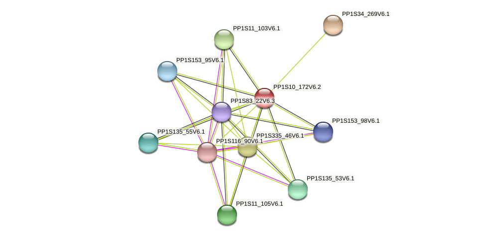 PP1S10_172V6.1 protein (Physcomitrella patens) - STRING interaction network