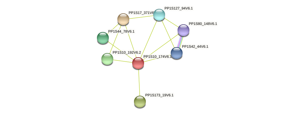 PP1S10_174V6.1 protein (Physcomitrella patens) - STRING interaction network