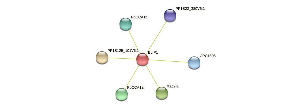 PP1S10_179V6.1 protein (Physcomitrella patens) - STRING interaction network
