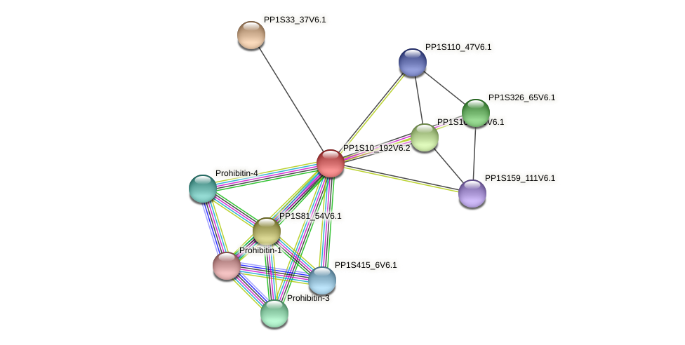 PP1S10_192V6.1 protein (Physcomitrella patens) - STRING interaction network