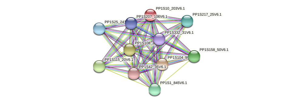 PP1S10_203V6.1 protein (Physcomitrella patens) - STRING interaction network