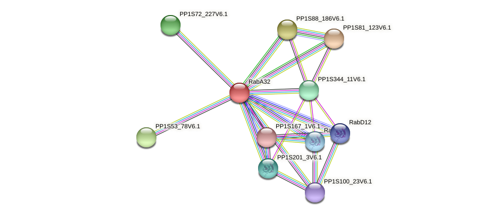 RabA32 protein (Physcomitrella patens) - STRING interaction network
