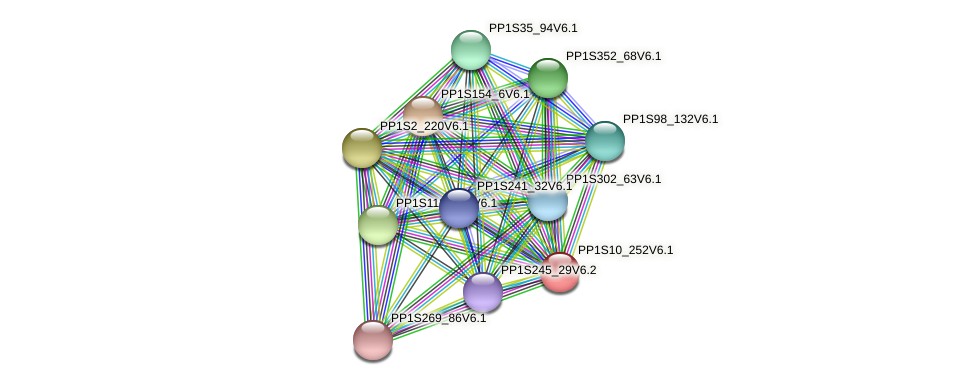 PP1S10_252V6.1 protein (Physcomitrella patens) - STRING interaction network