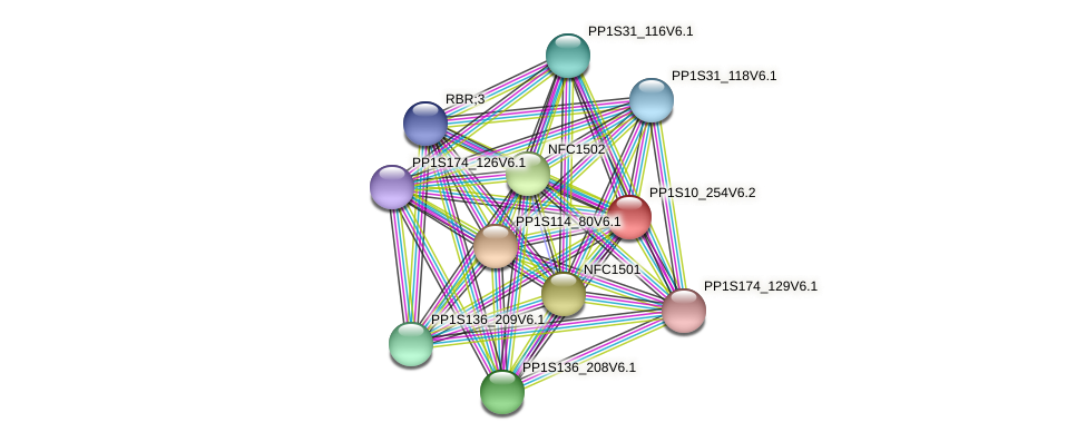 PP1S10_254V6.2 protein (Physcomitrella patens) - STRING interaction network