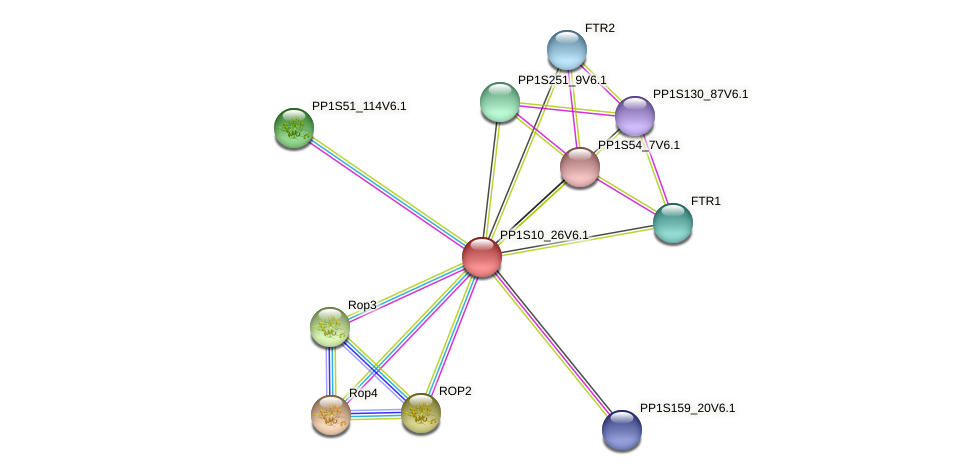 PP1S10_26V6.1 protein (Physcomitrella patens) - STRING interaction network