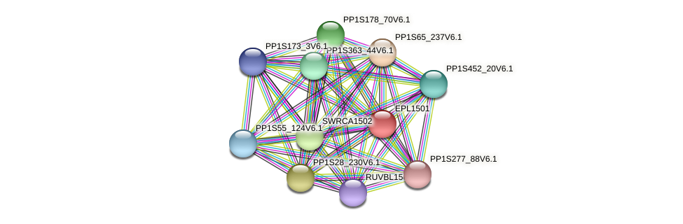 EPL1501 protein (Physcomitrella patens) - STRING interaction network