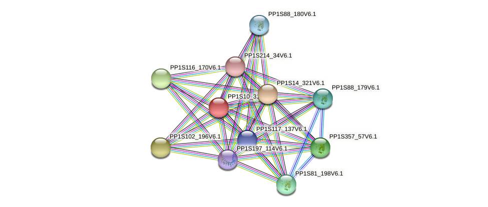 PP1S10_312V6.1 protein (Physcomitrella patens) - STRING interaction network