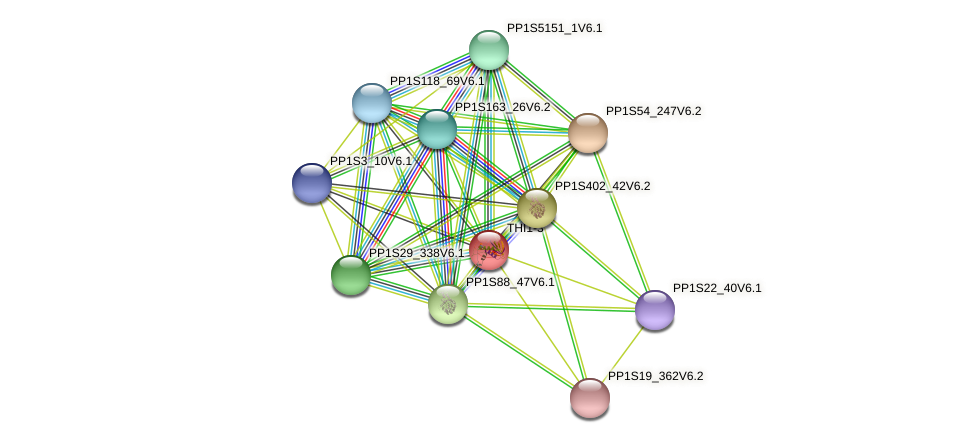 PP1S10_341V6.1 protein (Physcomitrella patens) - STRING interaction network