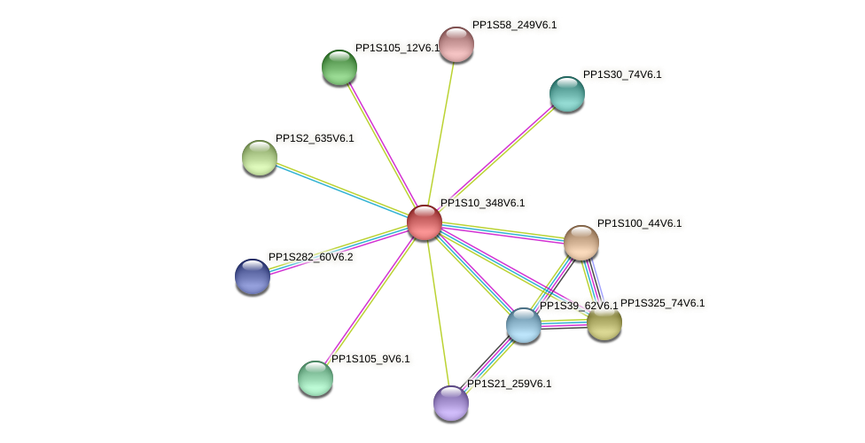PP1S10_348V6.1 protein (Physcomitrella patens) - STRING interaction network