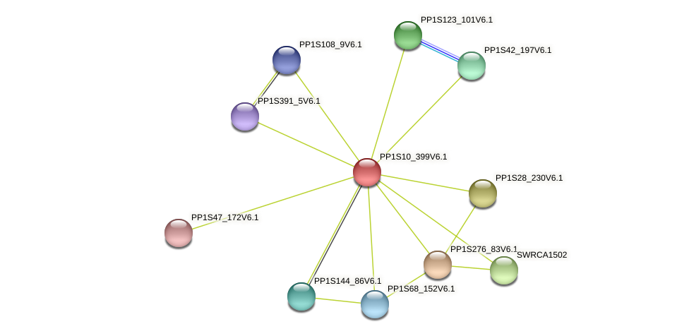 PP1S10_399V6.1 protein (Physcomitrella patens) - STRING interaction network