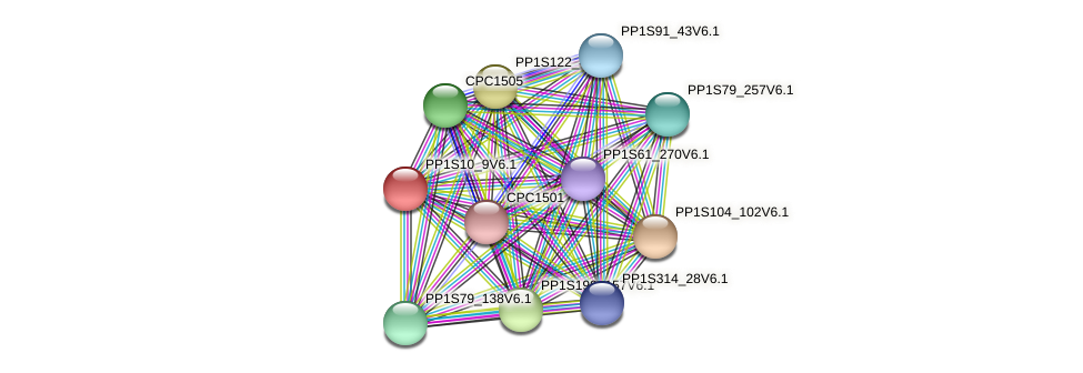 PP1S10_9V6.1 protein (Physcomitrella patens) - STRING interaction network