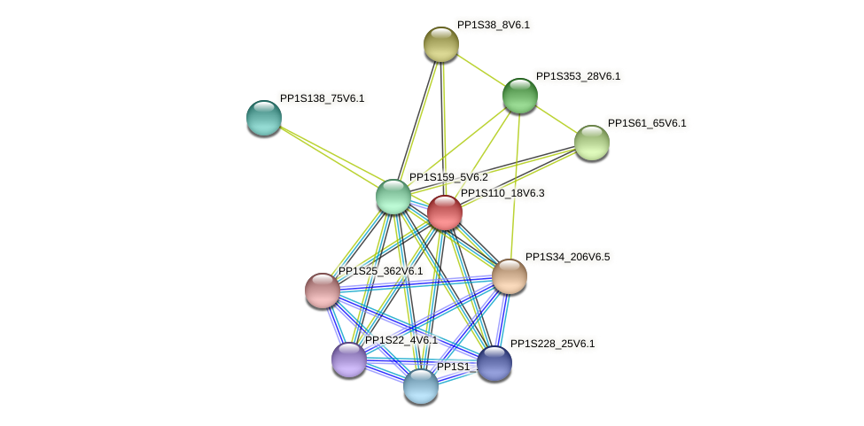 PP1S110_18V6.1 protein (Physcomitrella patens) - STRING interaction network